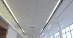 2' x 2' Acoustical Ceiling Tile