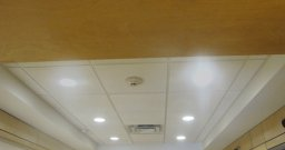 2' x 2' - Acoustical Ceiling Tile